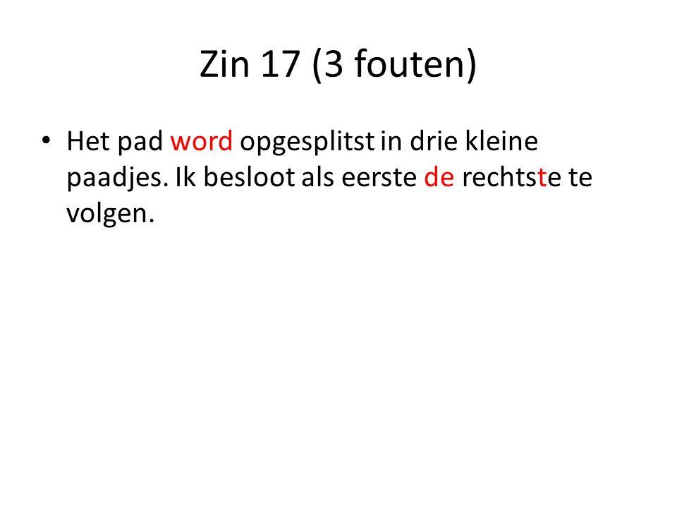 Zin 17 (3 fouten) Het pad word opgesplitst in drie kleine paadjes.