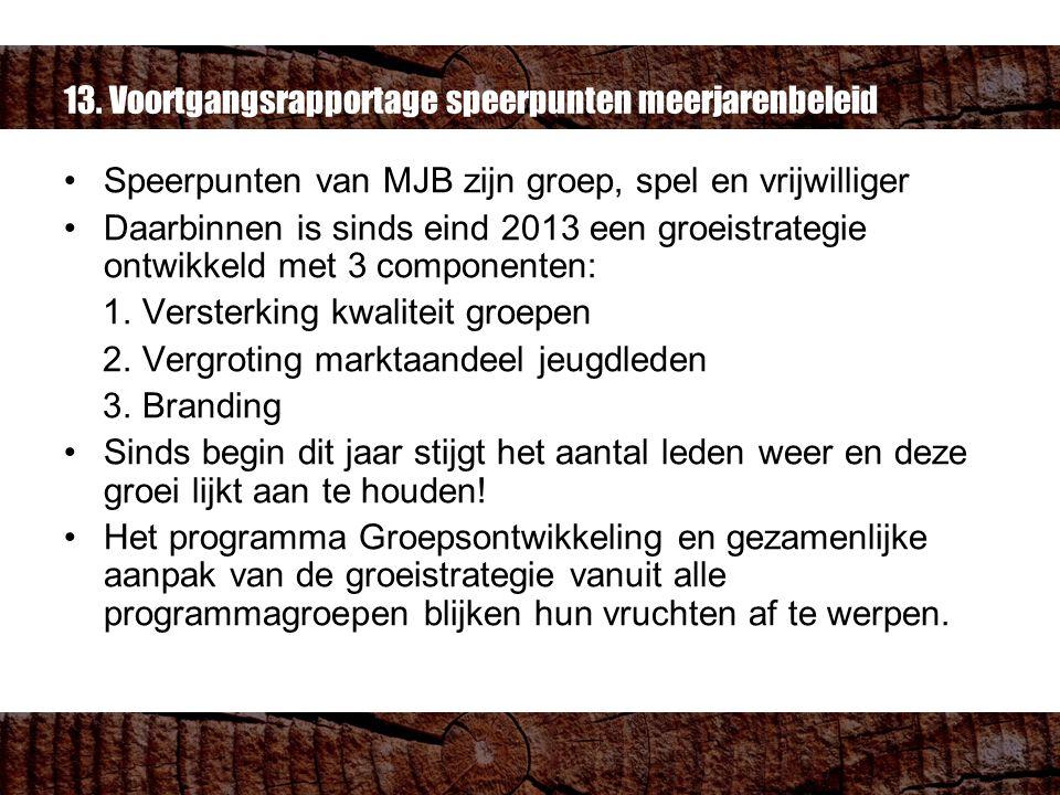 13. Voortgangsrapportage speerpunten meerjarenbeleid Speerpunten van MJB zijn groep, spel en vrijwilliger Daarbinnen is sinds eind 2013 een groeistrat