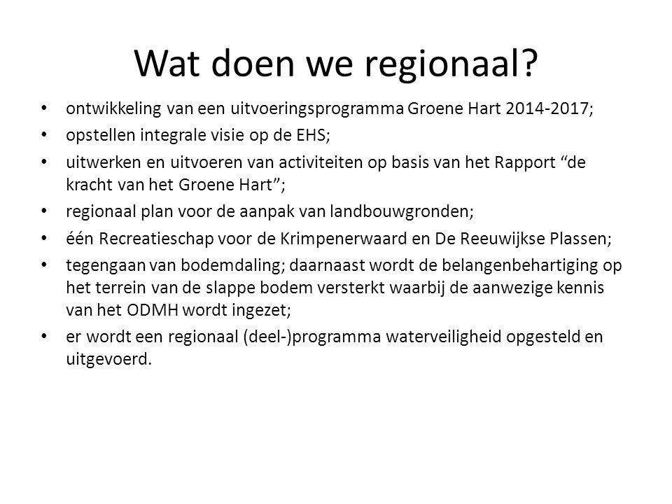 Wat doen we regionaal? ontwikkeling van een uitvoeringsprogramma Groene Hart 2014-2017; opstellen integrale visie op de EHS; uitwerken en uitvoeren va