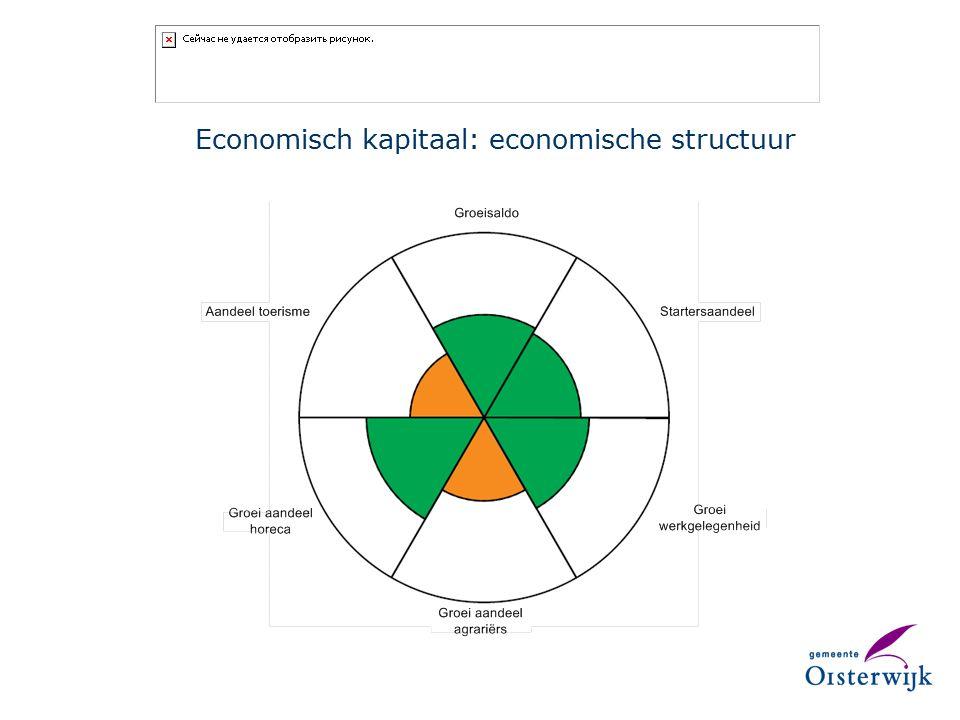 Economisch kapitaal: economische structuur