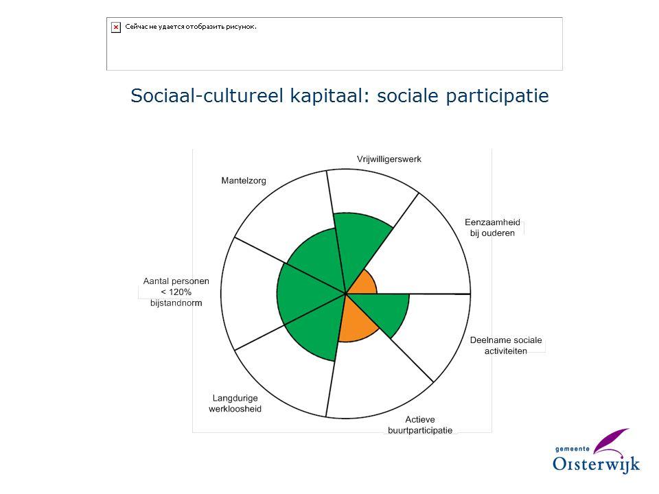 Sociaal-cultureel kapitaal: sociale participatie