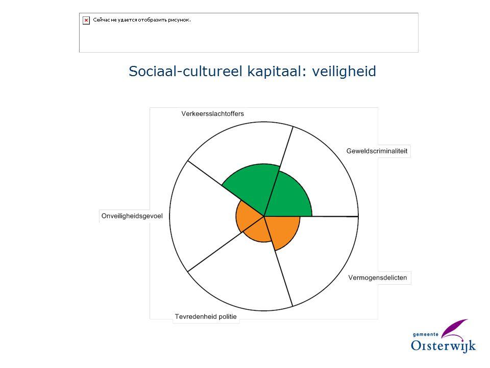 Sociaal-cultureel kapitaal: veiligheid