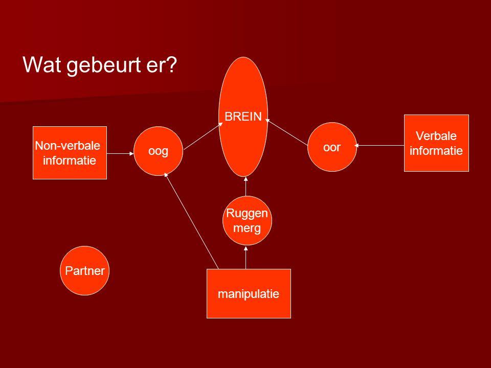 oog oor Ruggen merg BREIN Non-verbale informatie Verbale informatie manipulatie Partner Wat gebeurt er