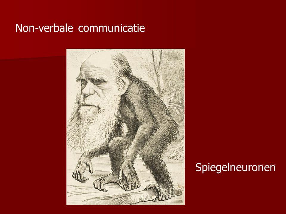 Non-verbale communicatie Spiegelneuronen