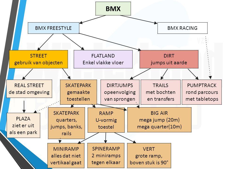 BMX BMX FREESTYLEBMX RACING STREET gebruik van objecten FLATLAND Enkel vlakke vloer DIRT jumps uit aarde REAL STREET de stad omgeving SKATEPARK gemaak