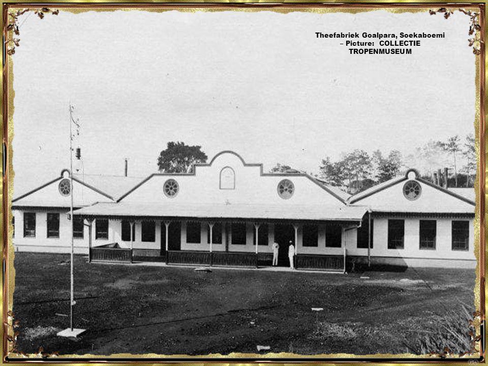 Dorp op het terrein van een onderneming te Lampegan – Picture: COLLECTIE TROPENMUSEUM