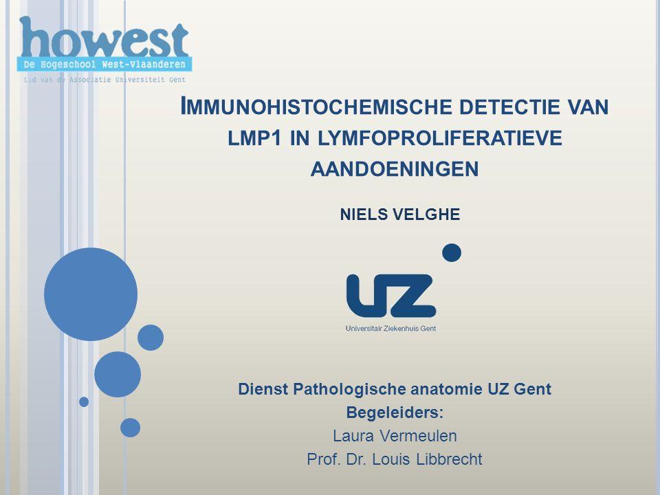 M ETHODEN Chromogeen In Situ Hybridisatie Pathways Immunohistochemisch LMP1 detectie in cytoplasma en in oppervlaktemembraan EBER detectie gelokaliseerd in de kern (blauwe kern) Methode op punt stellenTer controle EBV positief CISH LMP1 12