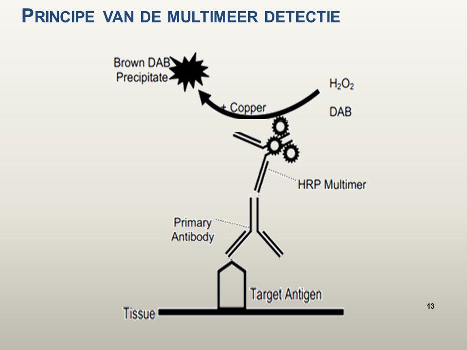 P RINCIPE VAN DE MULTIMEER DETECTIE 13