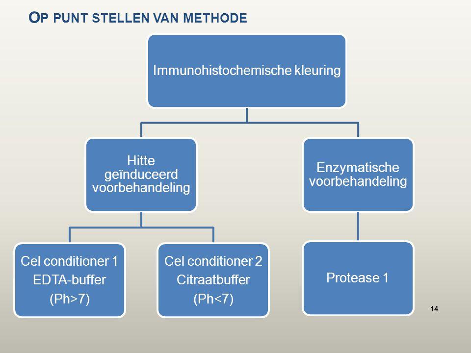 O P PUNT STELLEN VAN METHODE Immunohistochemische kleuring Hitte geïnduceerd voorbehandeling Cel conditioner 1 EDTA-buffer (Ph>7) Cel conditioner 2 Citraatbuffer (Ph<7) Enzymatische voorbehandeling Protease 1 14