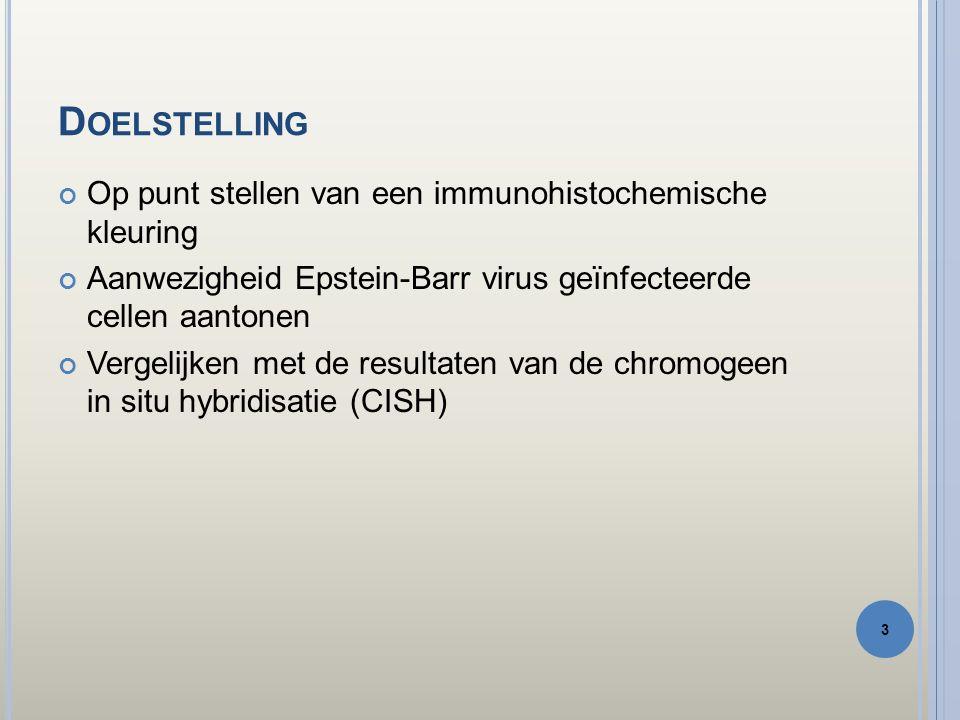 D OELSTELLING Op punt stellen van een immunohistochemische kleuring Aanwezigheid Epstein-Barr virus geïnfecteerde cellen aantonen Vergelijken met de resultaten van de chromogeen in situ hybridisatie (CISH) 3