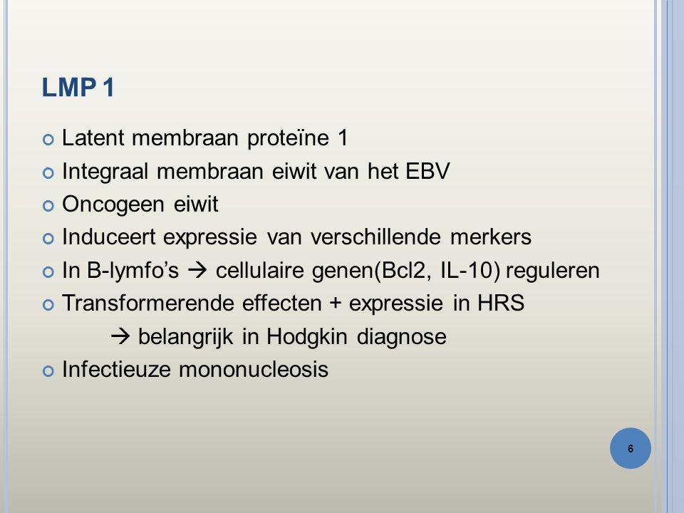 BETROUWBAARHEID Hodgkindiagnose = EBER + en LMP 1 + (in HRS cellen) Bij zwak signaal  ↑ kans op foute interpretatie Betrouwbare diagnose LMP1CISHMorfologie 17