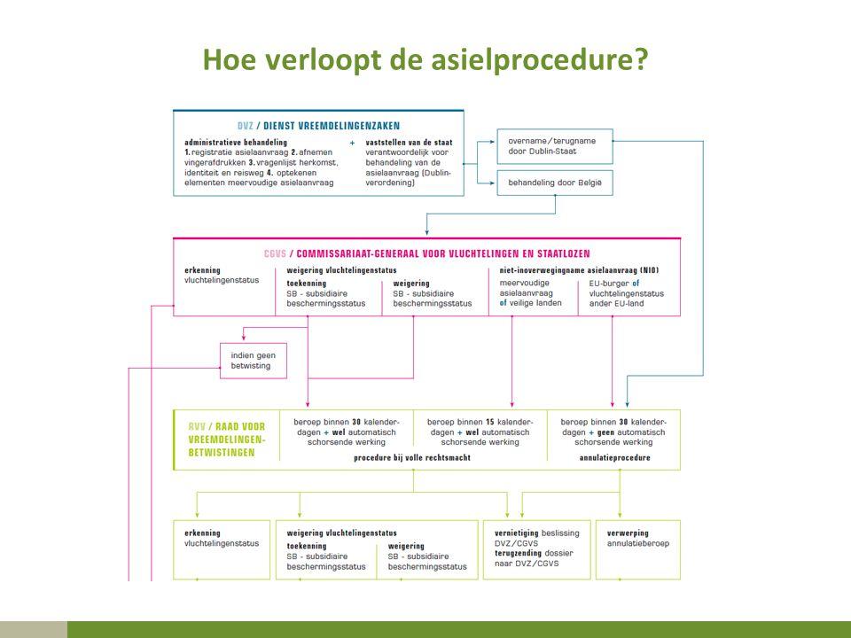 Hoe verloopt de asielprocedure?