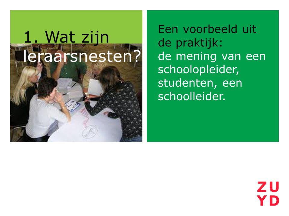 Een voorbeeld uit de praktijk: de mening van een schoolopleider, studenten, een schoolleider. 1. Wat zijn leraarsnesten?