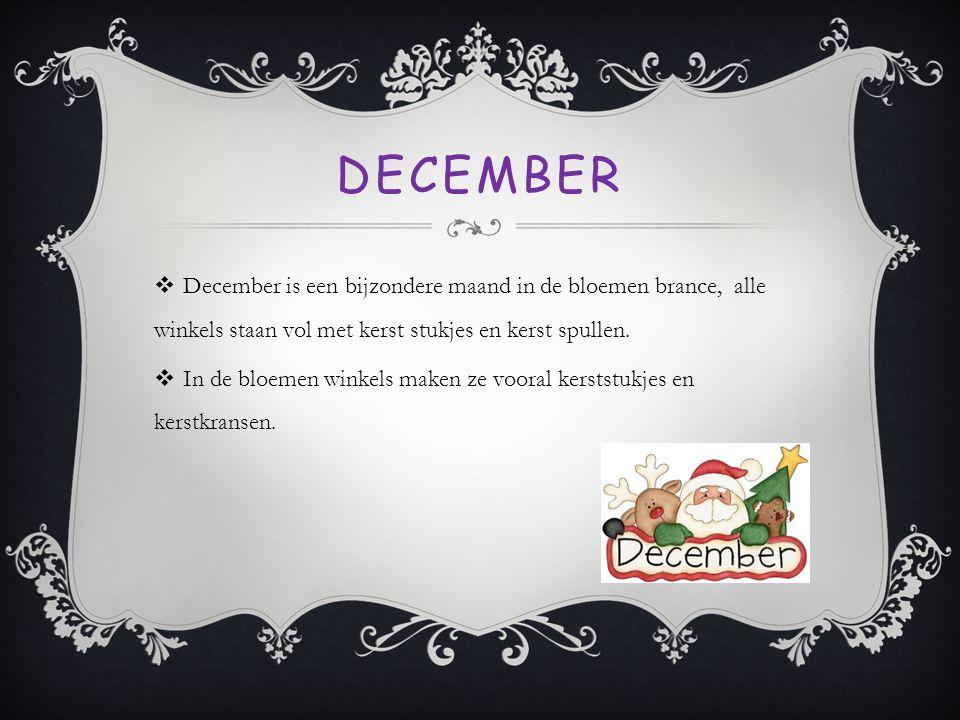 DECEMBER  December is een bijzondere maand in de bloemen brance, alle winkels staan vol met kerst stukjes en kerst spullen.  In de bloemen winkels m