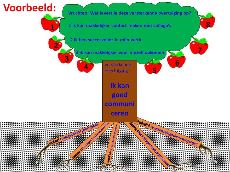 versterkende overtuiging: Ik kan goed communi ceren Vruchten: Wat levert je deze versterkende overtuiging op.