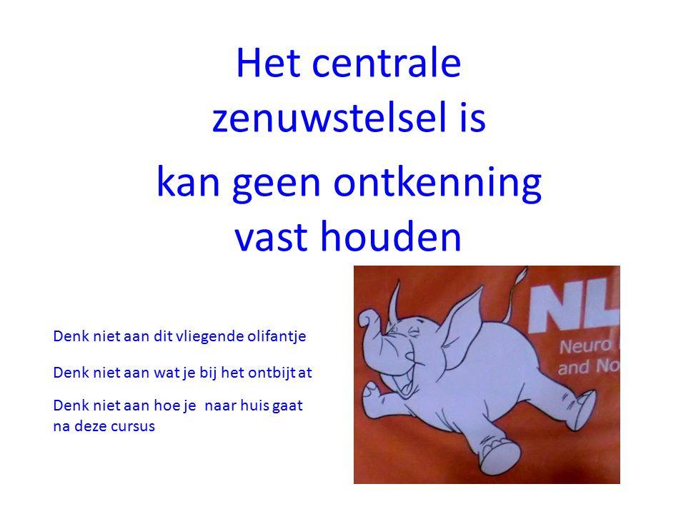 Het centrale zenuwstelsel is kan geen ontkenning vast houden Denk niet aan dit vliegende olifantje Denk niet aan wat je bij het ontbijt at Denk niet aan hoe je naar huis gaat na deze cursus