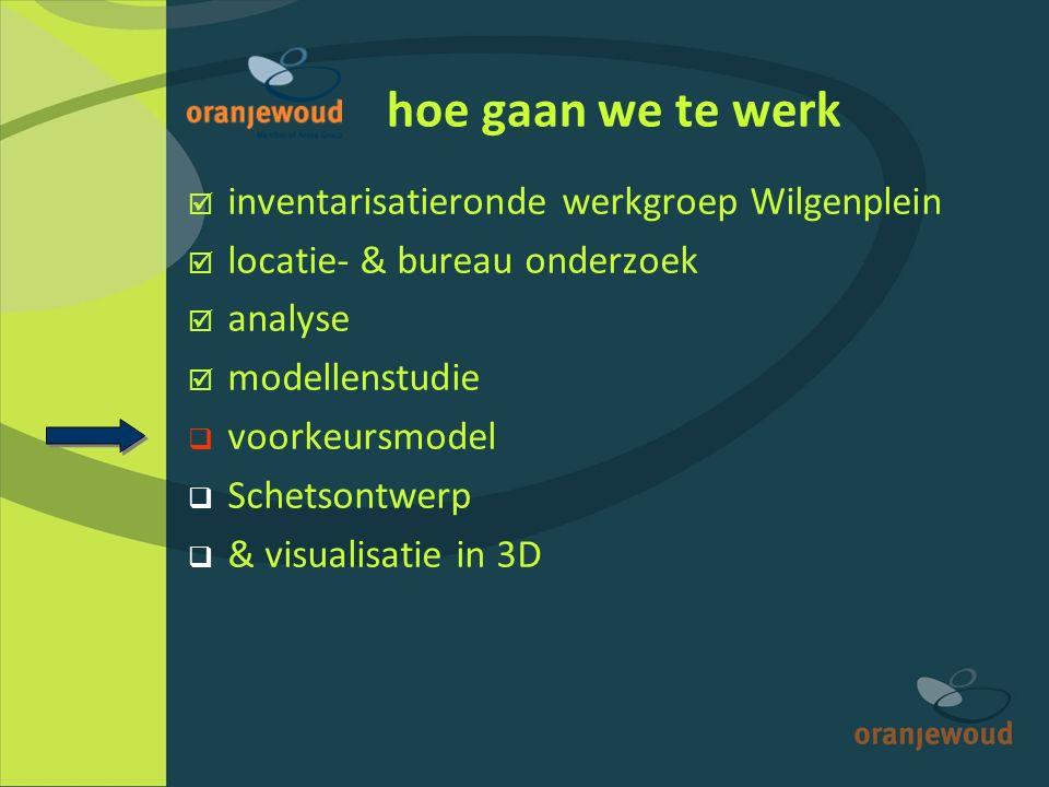 hoe gaan we te werk  inventarisatieronde werkgroep Wilgenplein  locatie- & bureau onderzoek  analyse  modellenstudie  voorkeursmodel  Schetsontwerp  & visualisatie in 3D