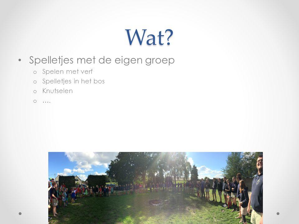 Wat Spelletjes met de eigen groep o Spelen met verf o Spelletjes in het bos o Knutselen o ….