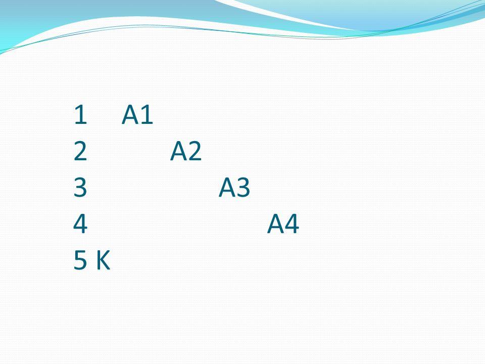 1 A1 2A2 3A3 4A4 5 K