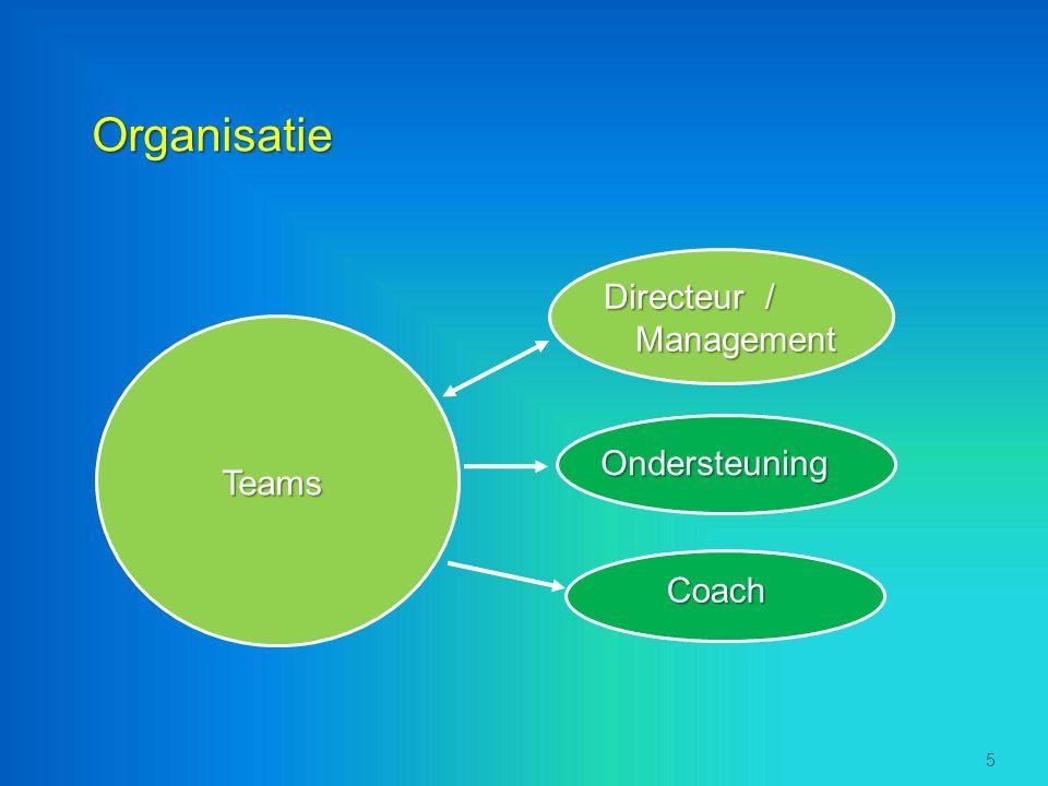 Organisatie Teams 5 Directeur / Management Ondersteuning Coach