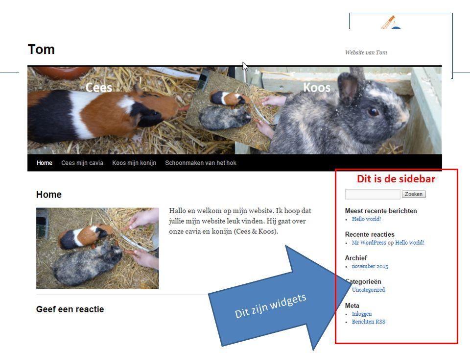 Plugins en Widgets Ik wil graag mijn instagram en youtube videos op mijn website laten zien.