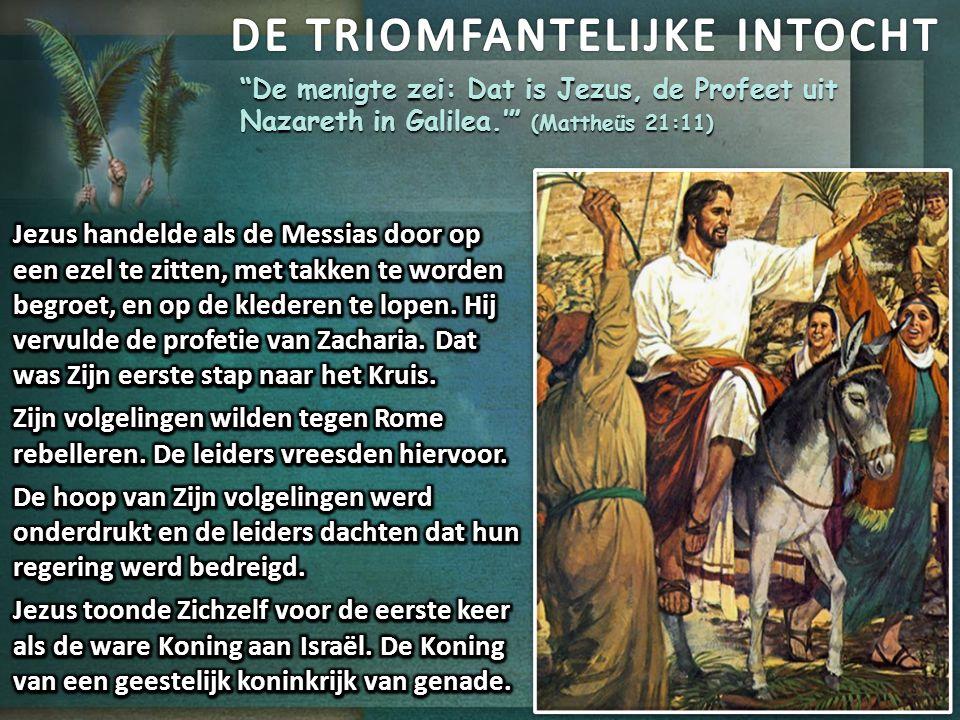 """""""De menigte zei: Dat is Jezus, de Profeet uit Nazareth in Galilea.'"""" (Mattheüs 21:11)"""