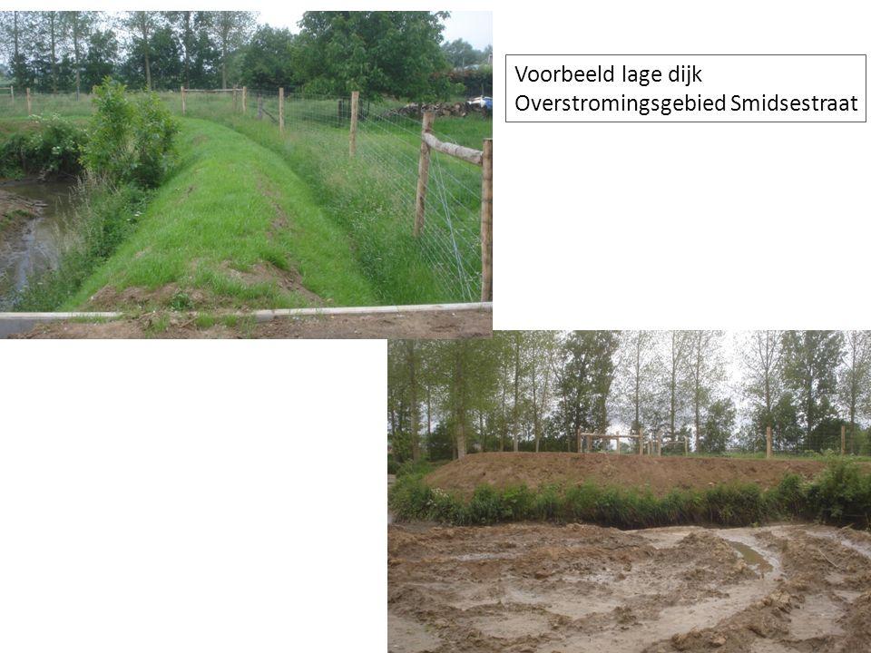 Voorbeeld lage dijk Overstromingsgebied Smidsestraat