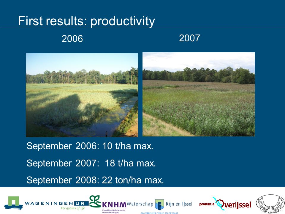 First results: productivity September 2006: 10 t/ha max.