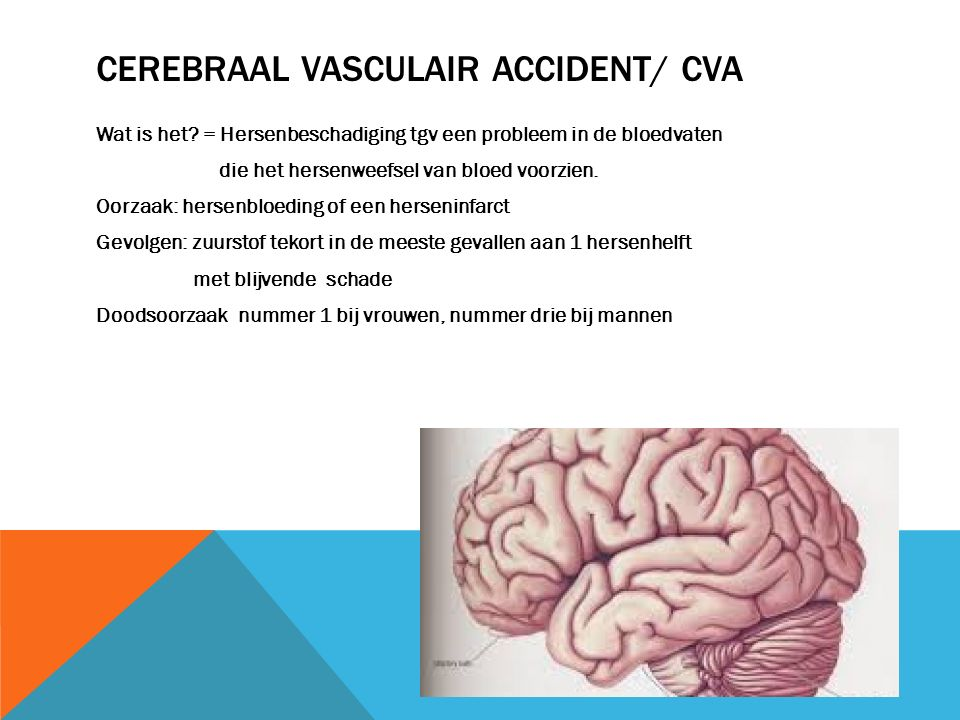 CEREBRAAL VASCULAIR ACCIDENT/ CVA Wat is het.
