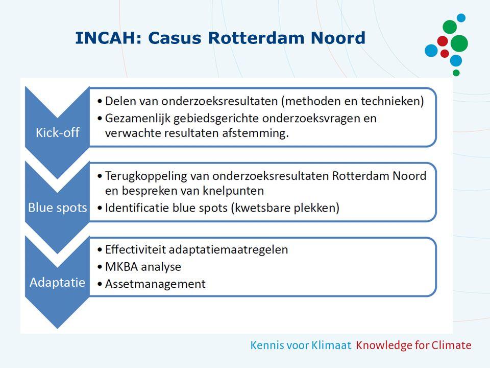 INCAH: Casus Rotterdam Noord