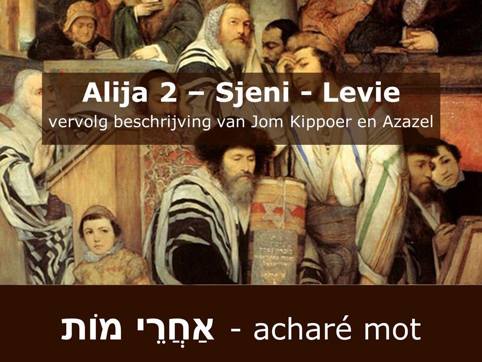 Gerim – de vreemdeling die de God van Israël liefheeft en zich voegt naar Torah.