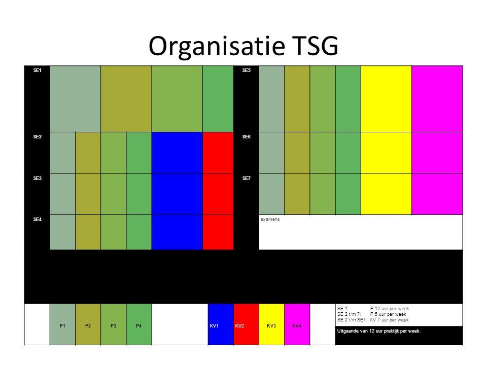 Organisatie TSG SE1 SE5 SE2 SE6 SE3 SE7 SE4 examens P1 P2 P3 P4 KV1 KV2 KV3 KV4 SE 1: P 12 uur per week SE 2 t/m 7: P 5 uur per week SE 2 t/m SE7: KV 7 uur per week Uitgaande van 12 uur praktijk per week.