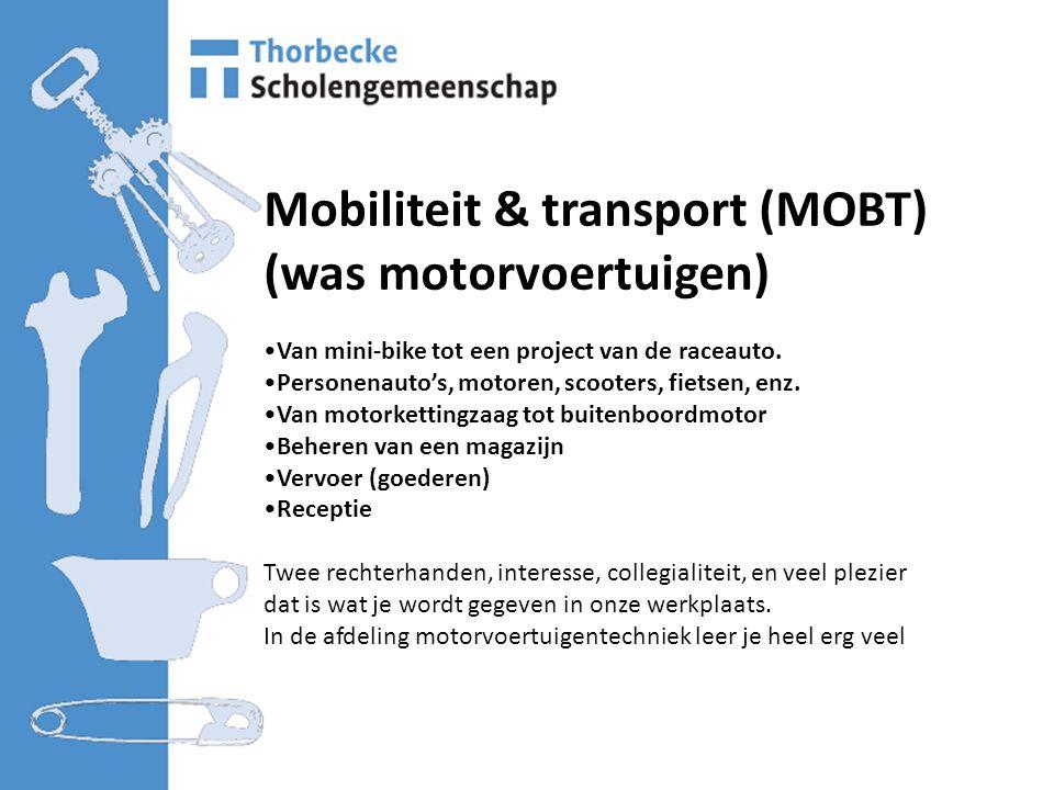 Mobiliteit & transport (MOBT) (was motorvoertuigen) Van mini-bike tot een project van de raceauto.