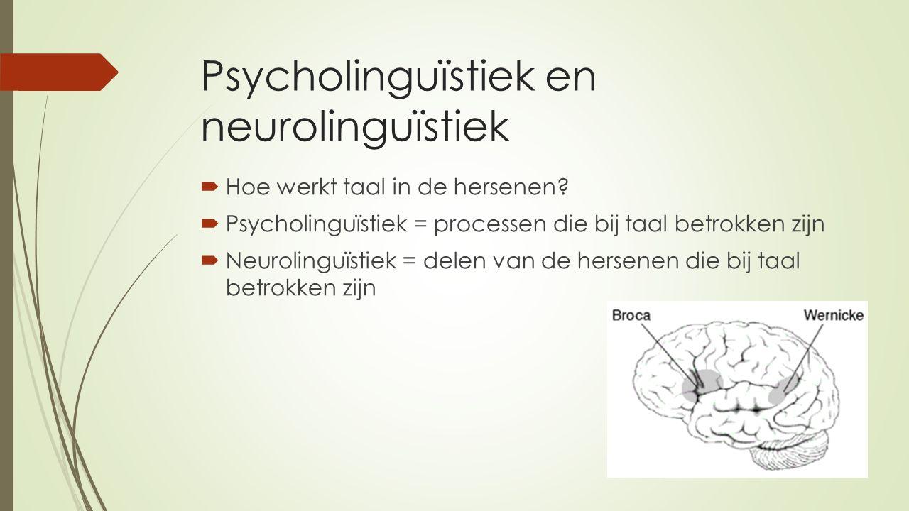 Psycholinguïstiek en neurolinguïstiek  Hoe werkt taal in de hersenen.