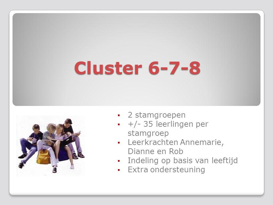 Cluster 6-7-8  2 stamgroepen  +/- 35 leerlingen per stamgroep  Leerkrachten Annemarie, Dianne en Rob  Indeling op basis van leeftijd  Extra ondersteuning