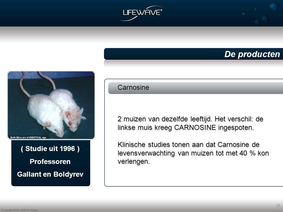 26 Carnosine De producten ( Studie uit 1996 ) Professoren Gallant en Boldyrev 2 muizen van dezelfde leeftijd.