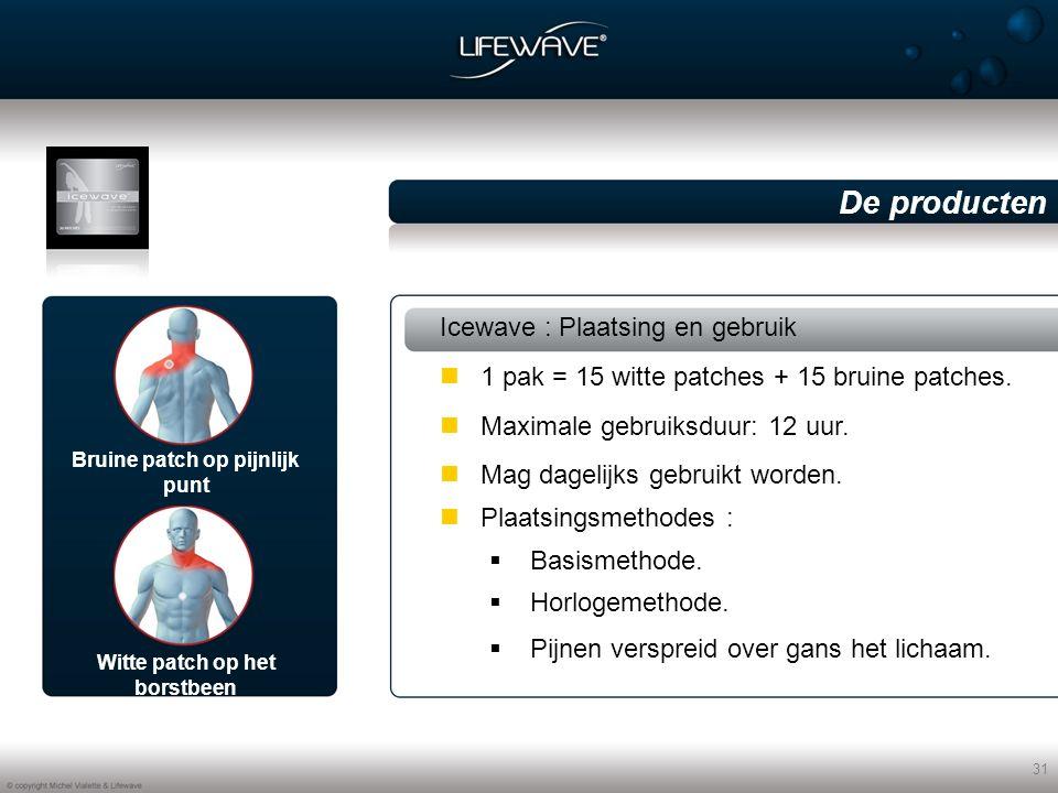 31 Icewave : Plaatsing en gebruik Maximale gebruiksduur: 12 uur.