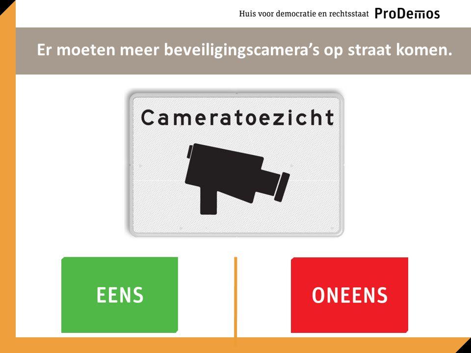 Er moeten meer beveiligingscamera's op straat komen.