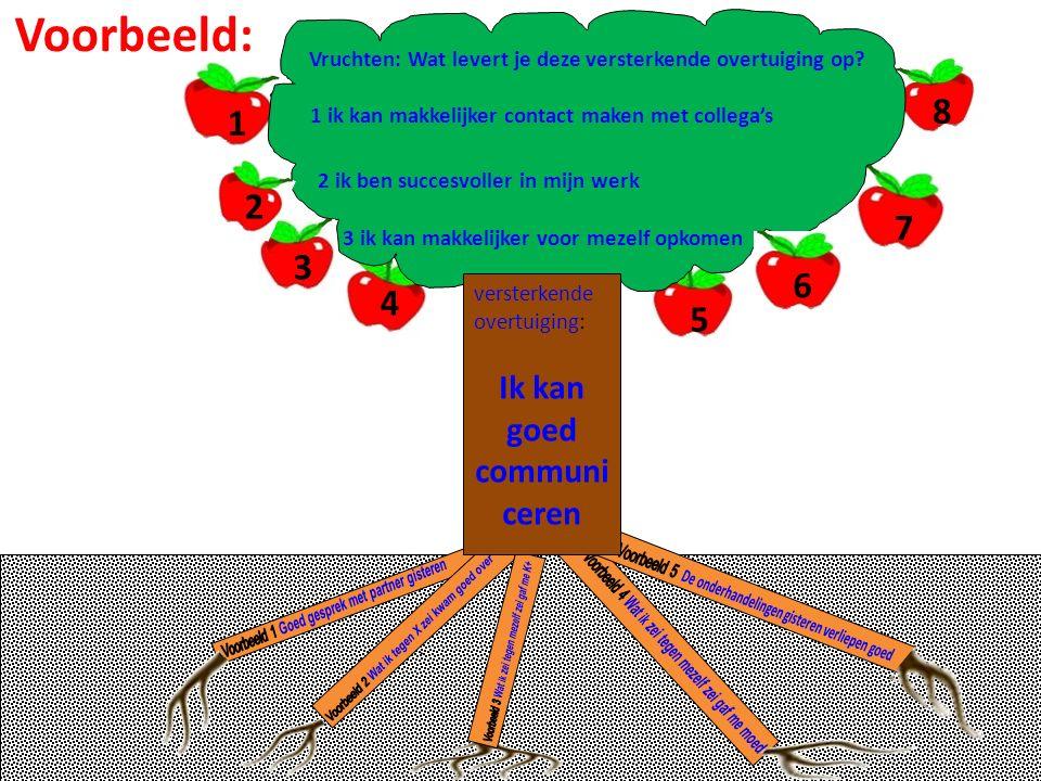 versterkende overtuiging: Ik kan goed communi ceren Vruchten: Wat levert je deze versterkende overtuiging op? 1 3 4 5 6 7 8 2 Voorbeeld: 1 ik kan makk