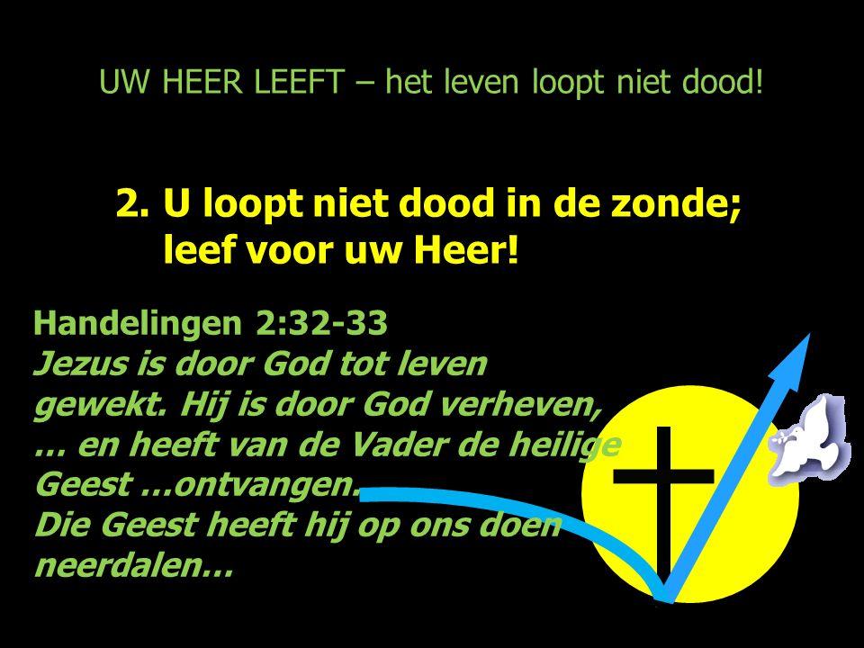 UW HEER LEEFT – het leven loopt niet dood! 2.U loopt niet dood in de zonde; leef voor uw Heer! Handelingen 2:32-33 Jezus is door God tot leven gewekt.