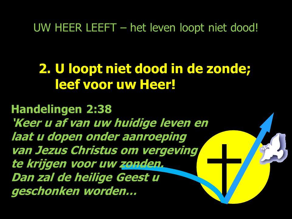 UW HEER LEEFT – het leven loopt niet dood! 2.U loopt niet dood in de zonde; leef voor uw Heer! Handelingen 2:38 'Keer u af van uw huidige leven en laa