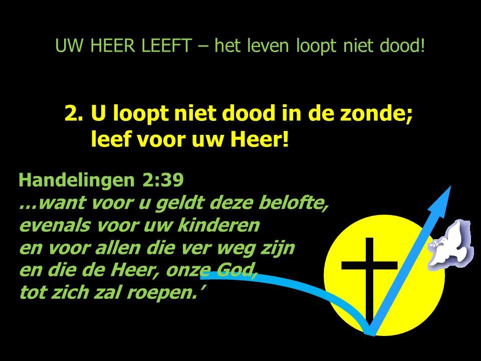 UW HEER LEEFT – het leven loopt niet dood! 2.U loopt niet dood in de zonde; leef voor uw Heer! Handelingen 2:39 …want voor u geldt deze belofte, evena