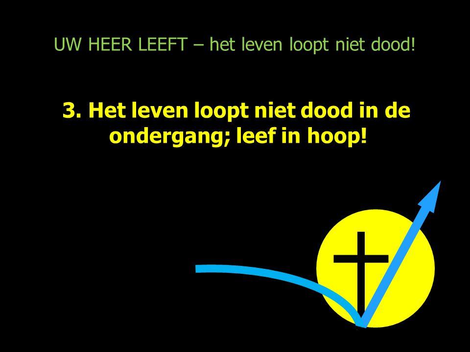 UW HEER LEEFT – het leven loopt niet dood! 3. Het leven loopt niet dood in de ondergang; leef in hoop!