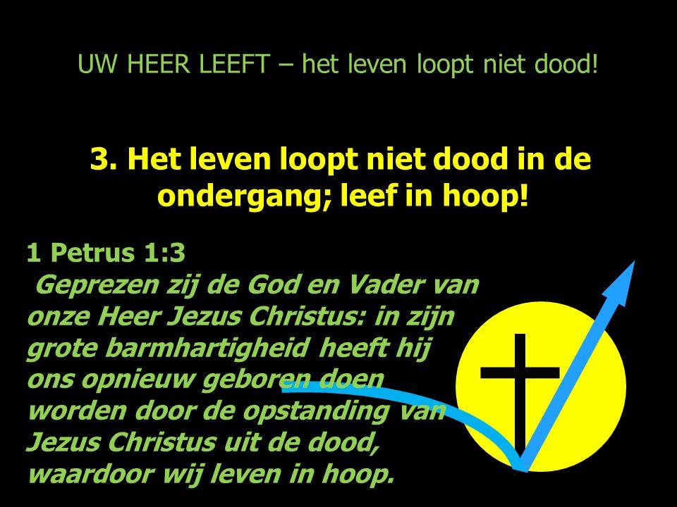 UW HEER LEEFT – het leven loopt niet dood! 3. Het leven loopt niet dood in de ondergang; leef in hoop! 1 Petrus 1:3 Geprezen zij de God en Vader van o