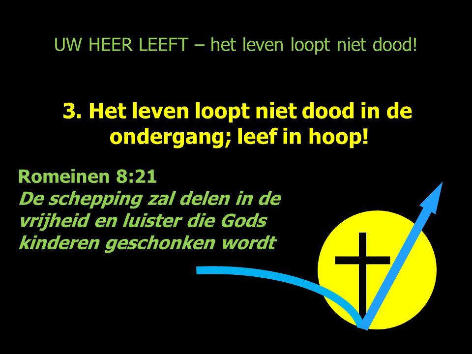 UW HEER LEEFT – het leven loopt niet dood! 3. Het leven loopt niet dood in de ondergang; leef in hoop! Romeinen 8:21 De schepping zal delen in de vrij