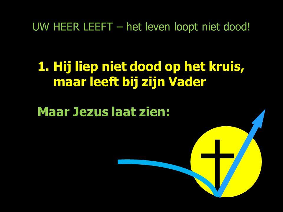 UW HEER LEEFT – het leven loopt niet dood! 1.Hij liep niet dood op het kruis, maar leeft bij zijn Vader Maar Jezus laat zien: