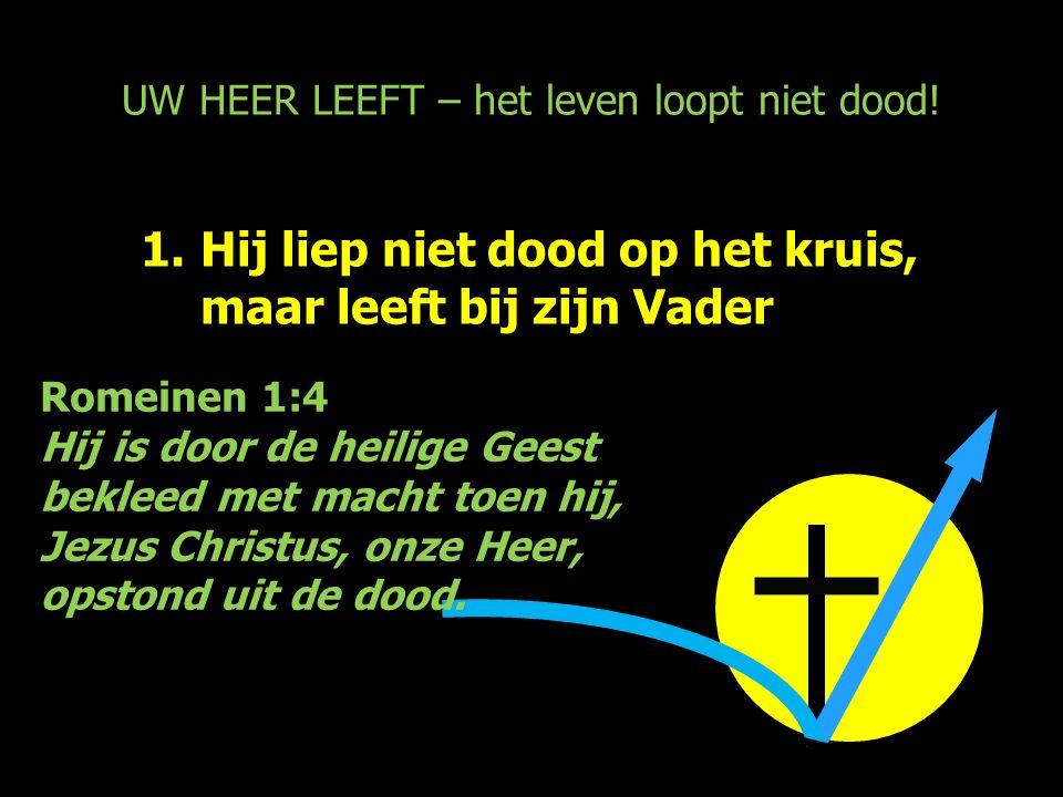 UW HEER LEEFT – het leven loopt niet dood! 1.Hij liep niet dood op het kruis, maar leeft bij zijn Vader Romeinen 1:4 Hij is door de heilige Geest bekl