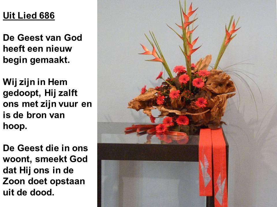 Uit Lied 686 De Geest van God heeft een nieuw begin gemaakt.