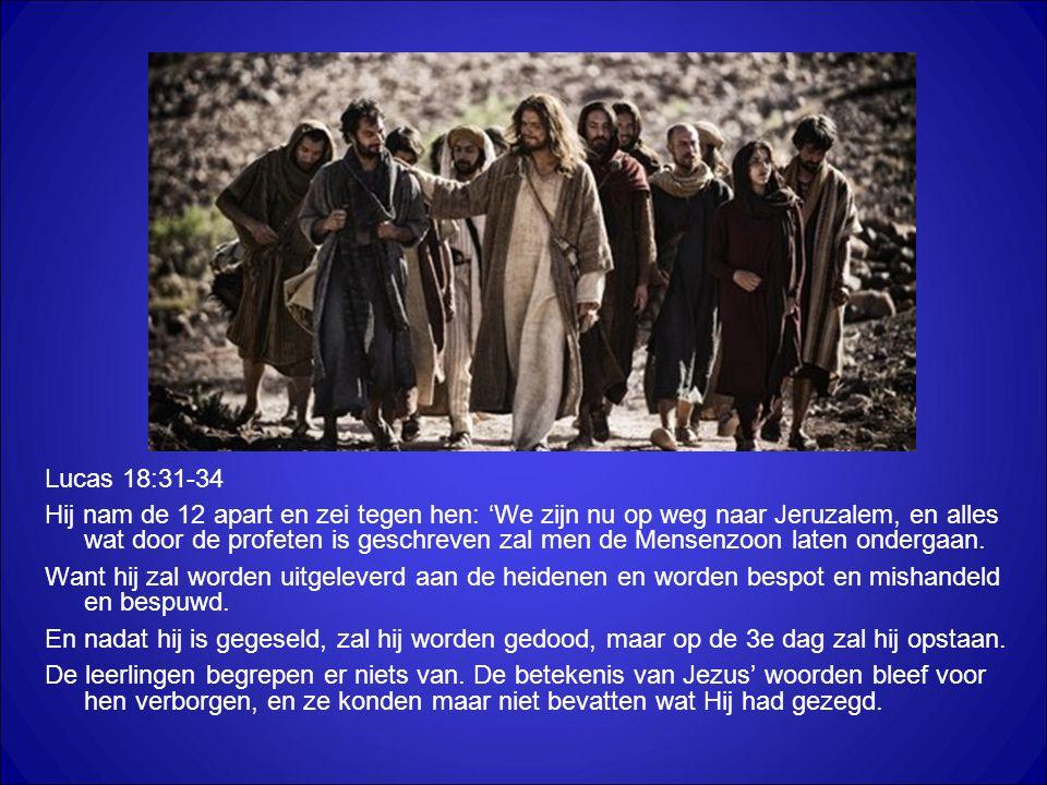 Lucas 18:31-34 Hij nam de 12 apart en zei tegen hen: 'We zijn nu op weg naar Jeruzalem, en alles wat door de profeten is geschreven zal men de Mensenzoon laten ondergaan.