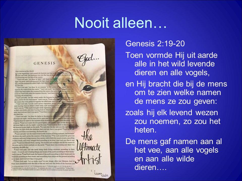 Nooit alleen… Genesis 2:19-20 Toen vormde Hij uit aarde alle in het wild levende dieren en alle vogels, en Hij bracht die bij de mens om te zien welke namen de mens ze zou geven: zoals hij elk levend wezen zou noemen, zo zou het heten.